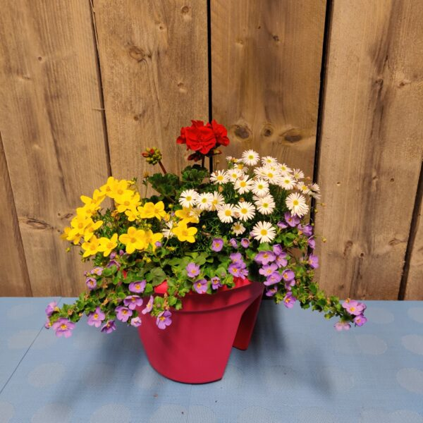 balustrade bloembak